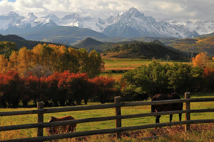 Mt. Sneffels Colorado with Horses by John Hoffman