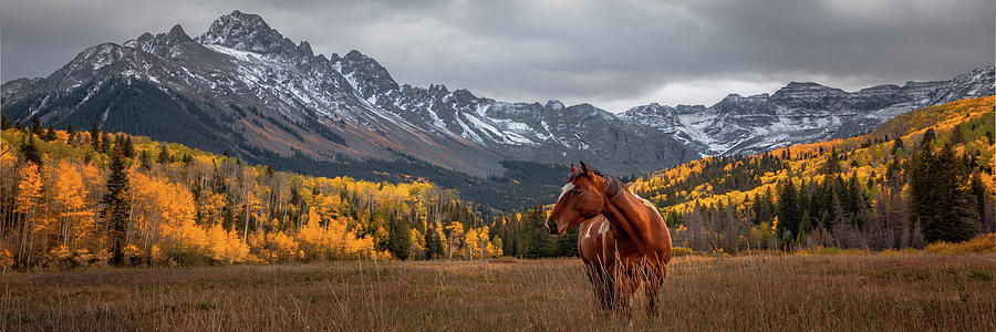 Mt Sneffles and Horse by Ryan Smith