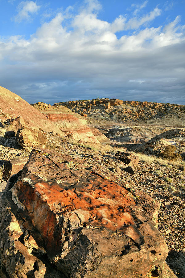 Multi-colored Boulders On Ruby Mountain Photograph