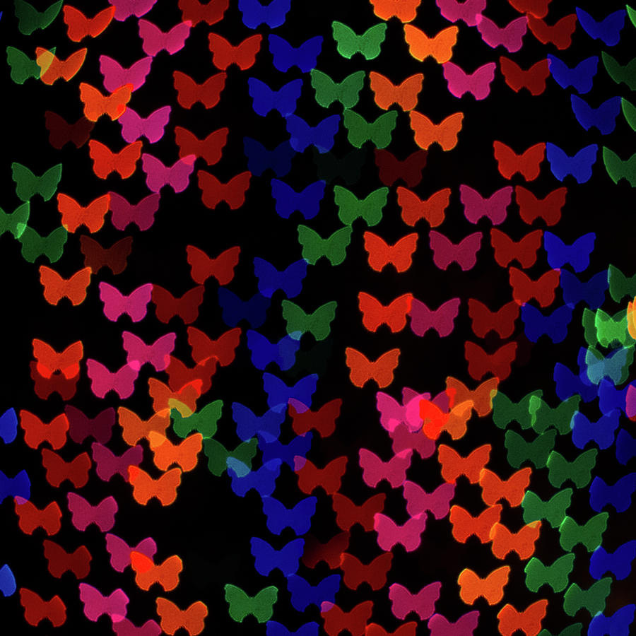 Multi Colored Butterfly Shaped Lights Photograph by Lotus Carroll