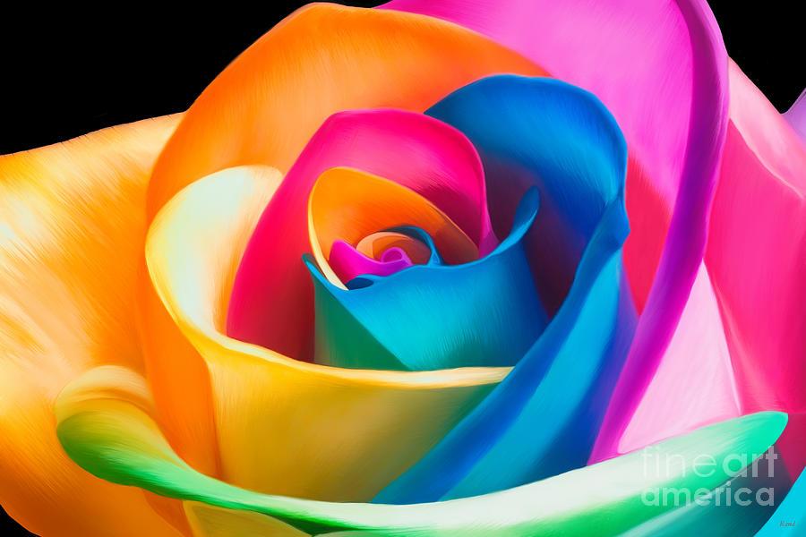Multi Rose by Rand Herron