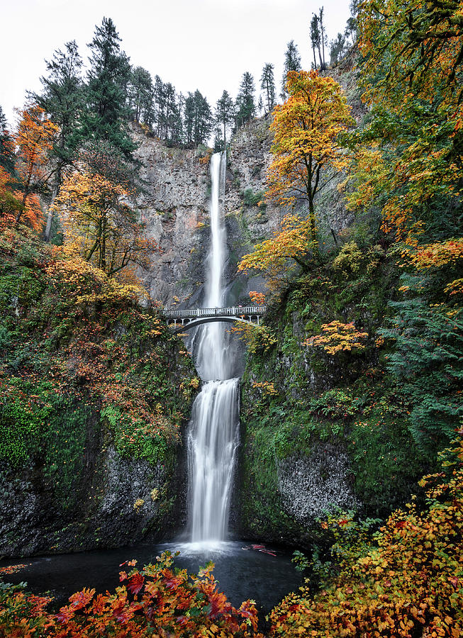 Multnomah Falls Autumn by Wes and Dotty Weber