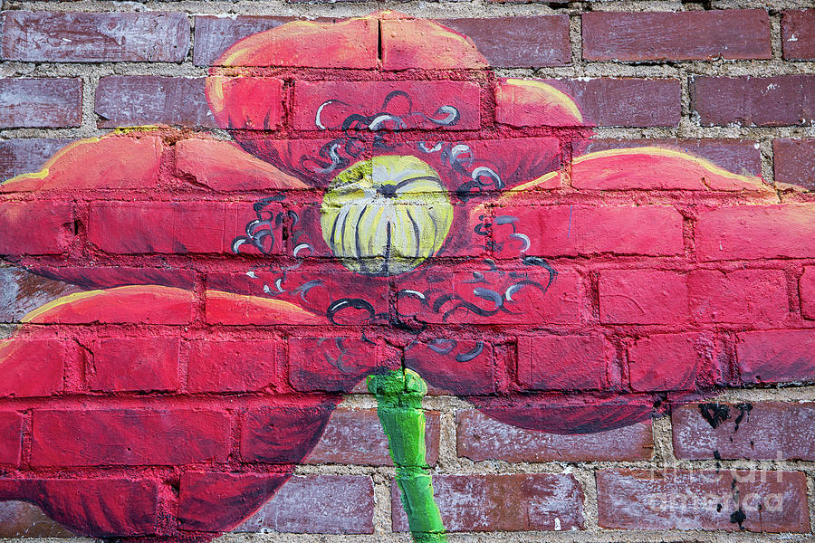 Mural of Flower on Brick Wall by Kevin McCarthy