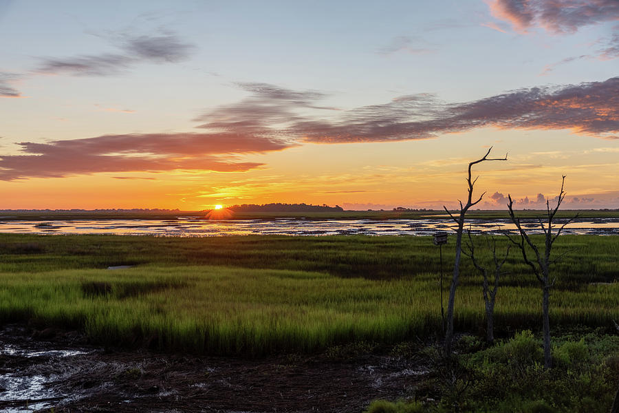 Murrells Inlet Sunrise - August 4 2019 by D K Wall