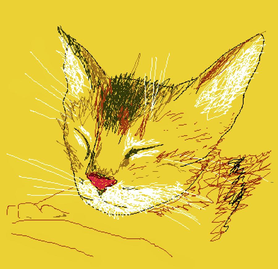 Murzik Sleeps Digital Art by Dimka Thedimka