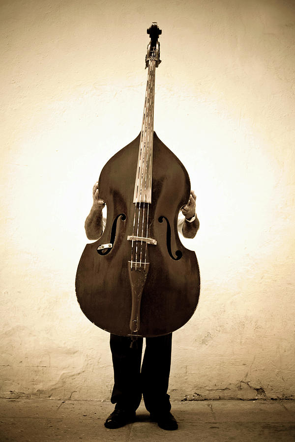 Musician With Double Bass Photograph by Holly Wilmeth