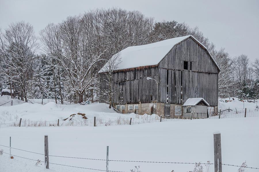 Muskoka Barn In Winter by Andrew Wilson