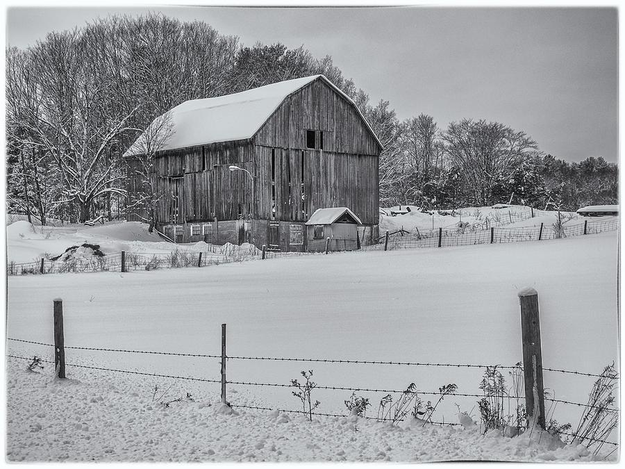 Muskoka Barn In Winter in Black and White by Andrew Wilson