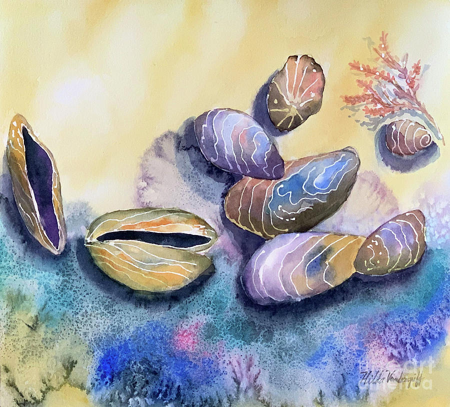 Mussels Sea Shells  by Hilda Vandergriff