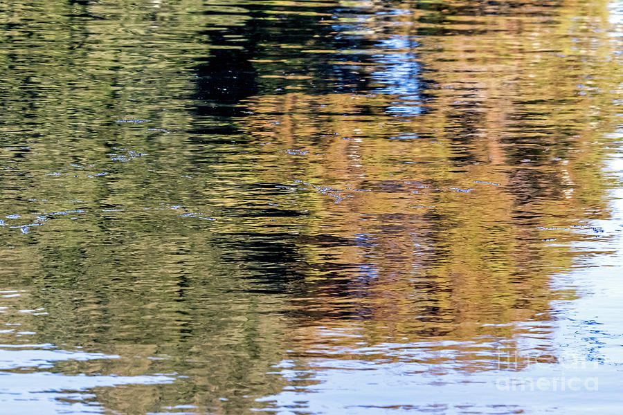 Muted Reflections by Kate Brown