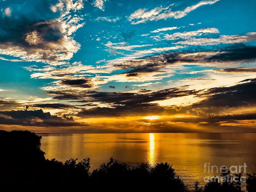 My Blue Heaven Photograph