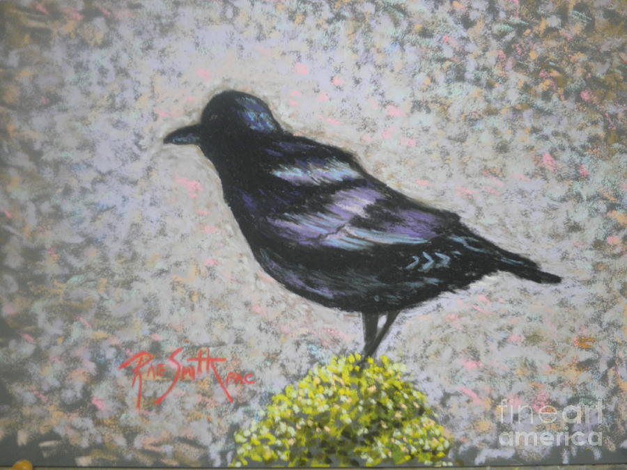 My Crow  by Rae  Smith PAC