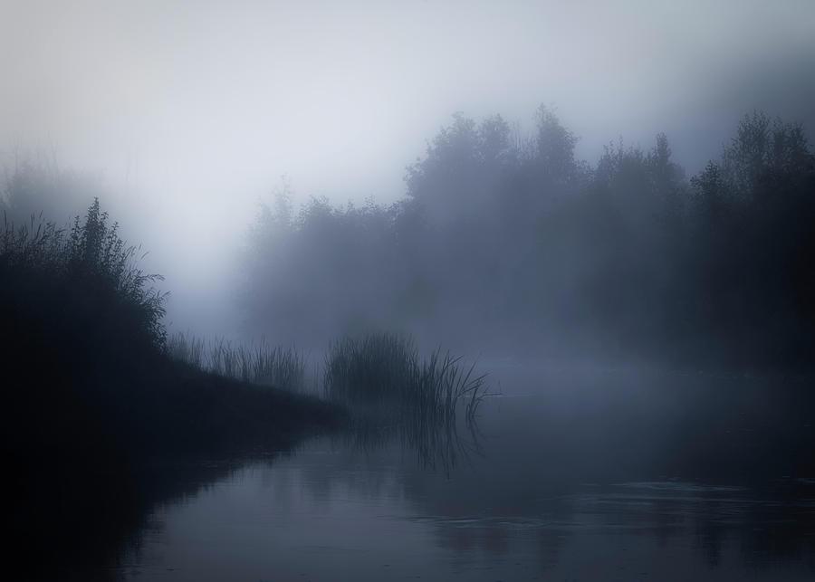 My Dream by Dan Jurak