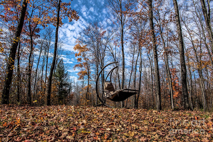 Fall Photograph - My Happy Place by Francis Lavigne-Theriault