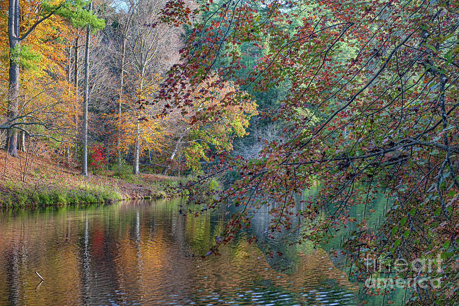 My Heart Always Points South - Biltmore In The Fall Photograph