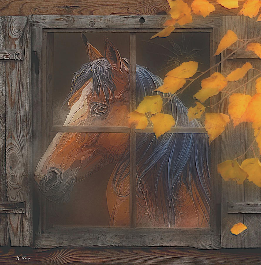 MY HOME IS IN THE STABLE by G Berry