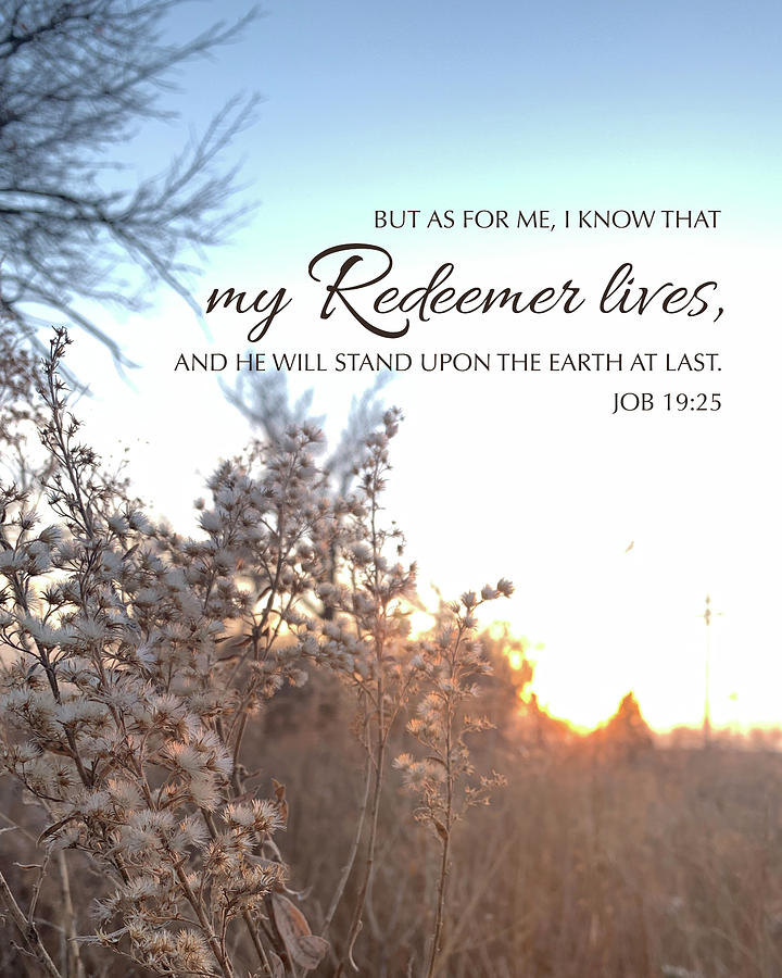 Job Photograph - My Redeemer Lives by April Beaver