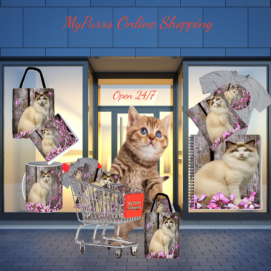 MyPurrs Online Shopping by Cynthia Leaphart