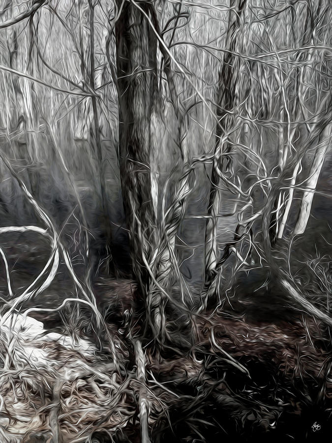 Mystery Among the Vines by Wayne King