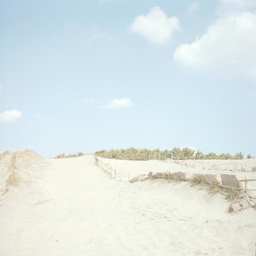 Nakatajima Sand Dunes Photograph by Haribote.nobody
