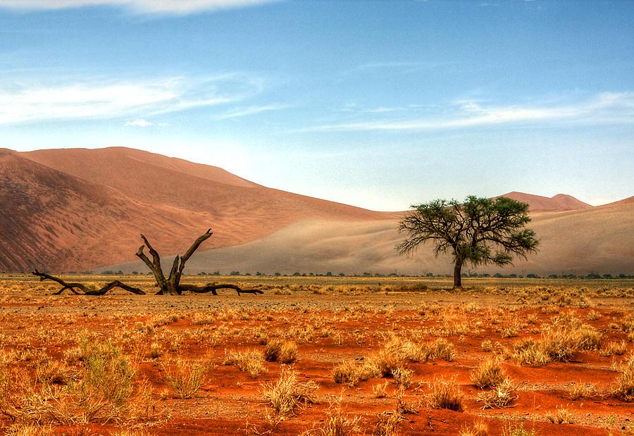 Namibia Desert Photograph by Björn Disch