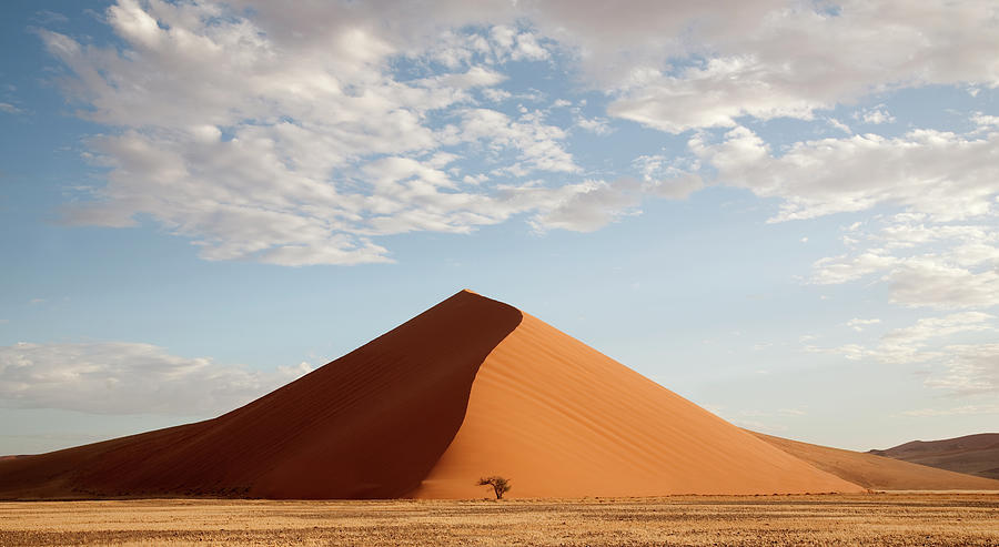 Namibia, Namib Desert Photograph by Grant Faint