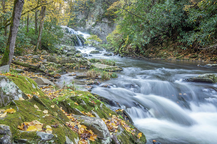 Fall Photograph - Nantahala Fall Flow by David R Robinson