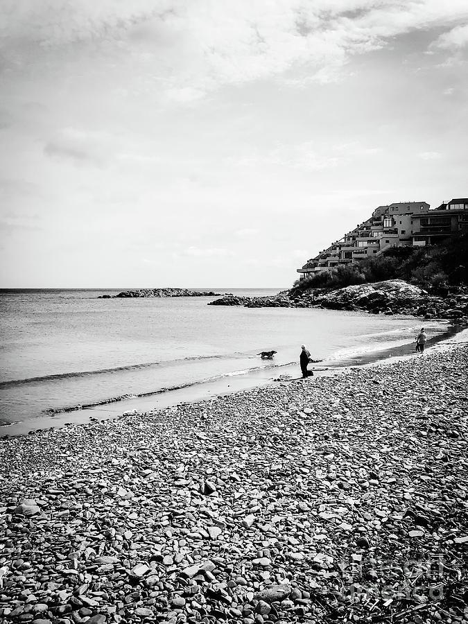 Nantasket Beach Dog Photograph by JMerrickMedia