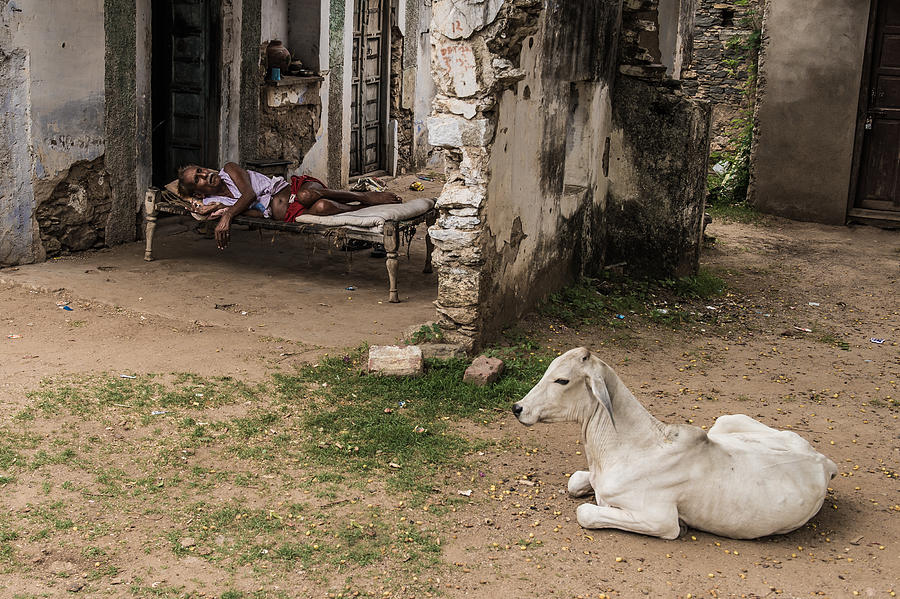 Street Photograph - Nap Time by Mohammed Alnaser