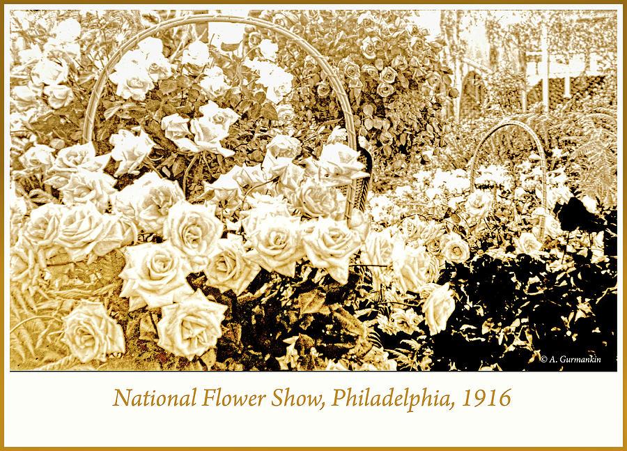 National Flower Show, Philadelphia, 1916 by A Gurmankin