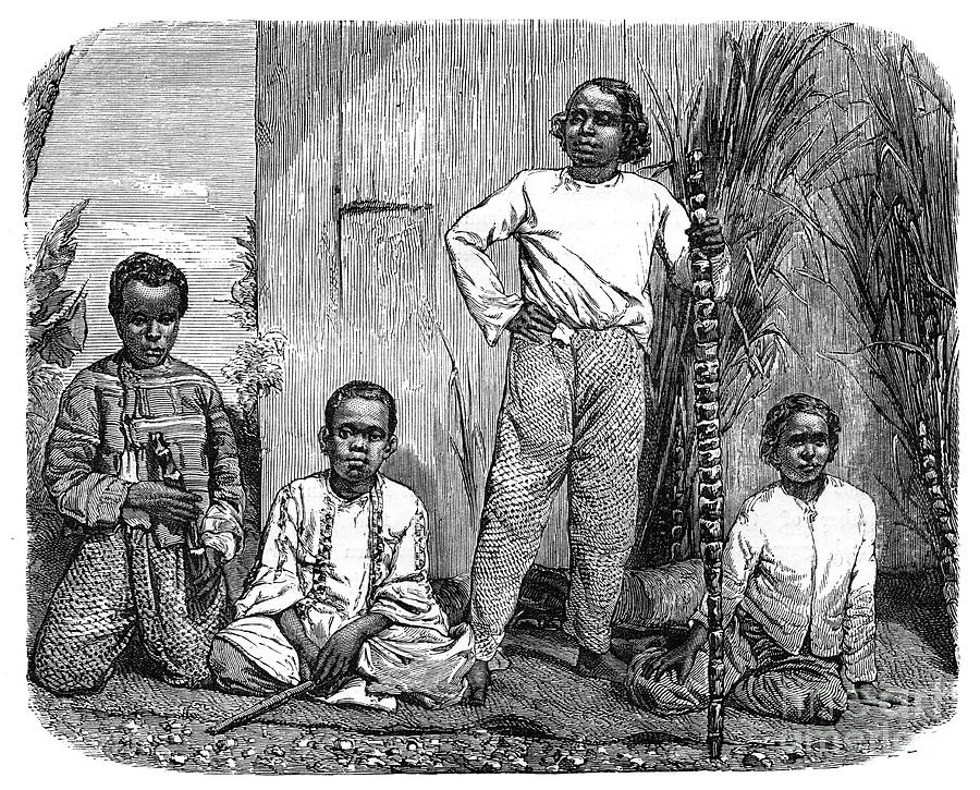 Natives Of The Island Of Reunion, C1890 Drawing by Print Collector