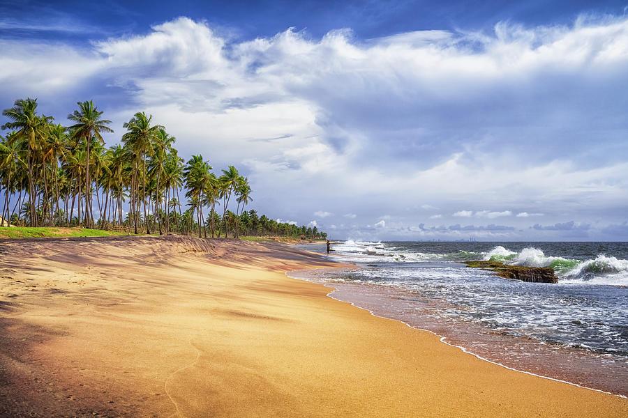 Natural Beach Of Sri Lanka Photograph by Cinoby