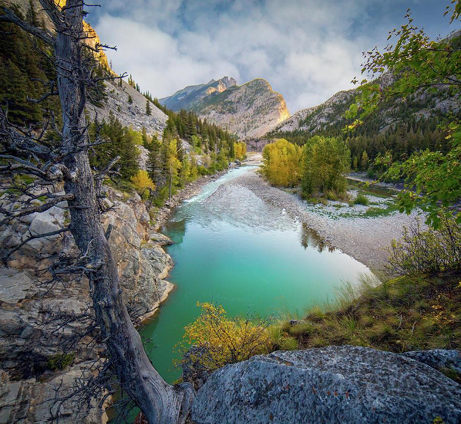 Naturally Framed / Augusta, Montana  by Nicholas Parker
