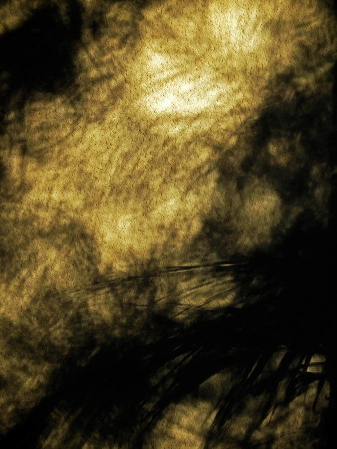NATURE ART 39 by Jorg Becker
