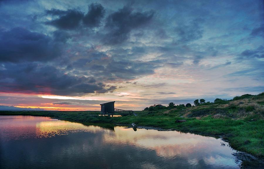 Nature spectacle in Alviso by Quality HDR Photography