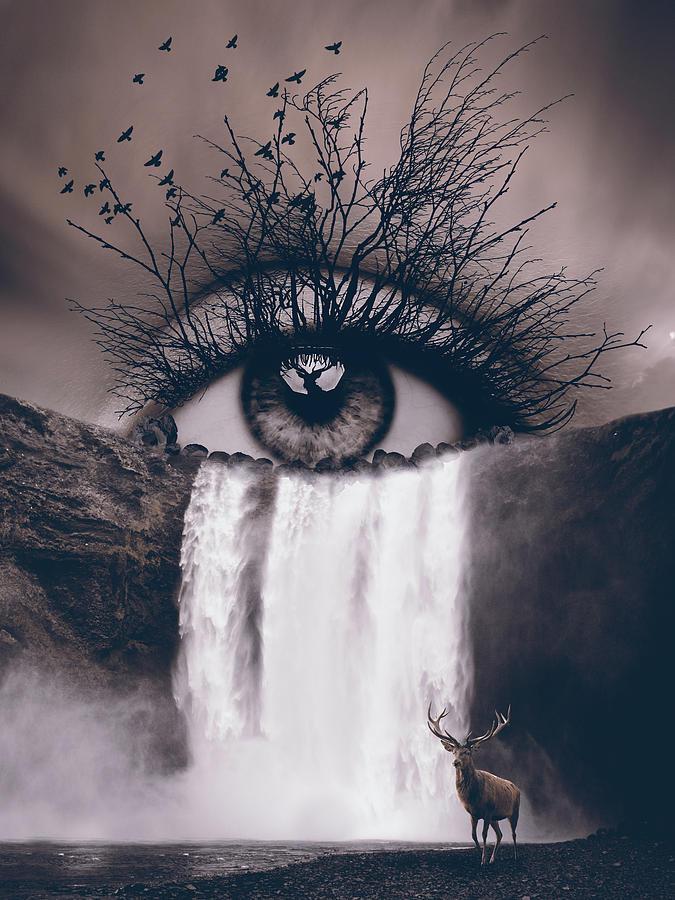 Natures Eye Digital Art