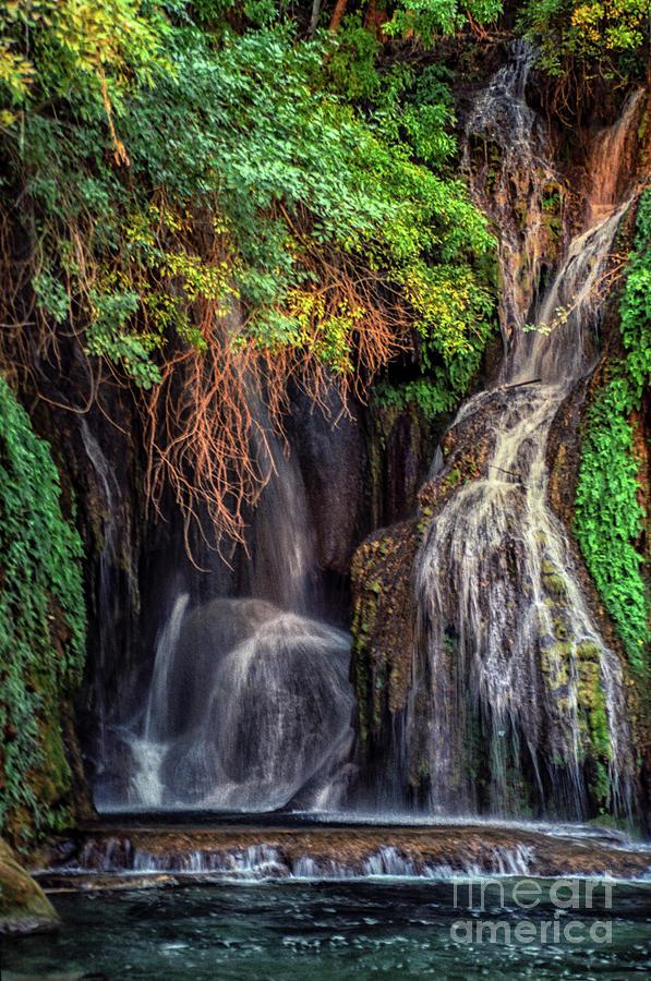 Navajo Falls Grotto by Kathy McClure