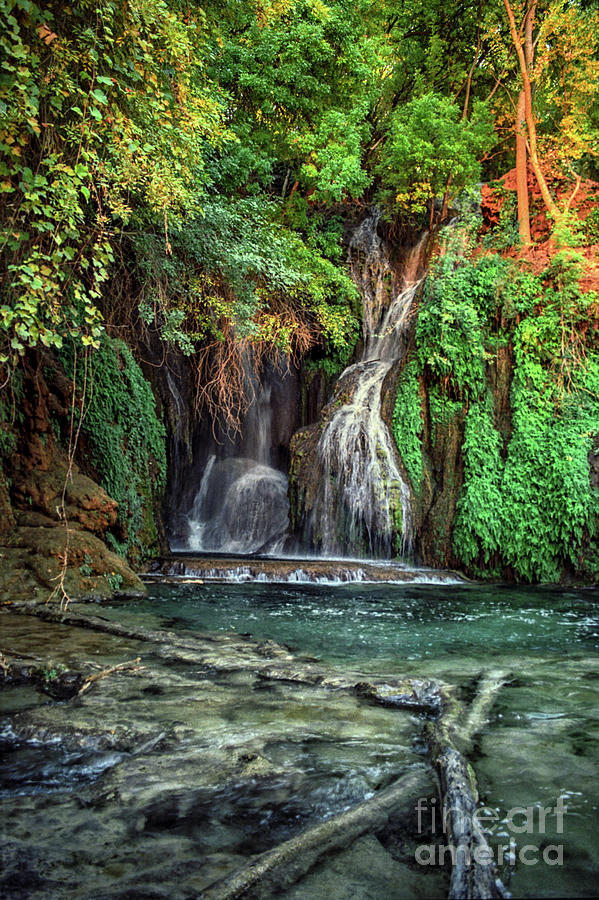 Navajo Falls Grotto with Pools by Kathy McClure