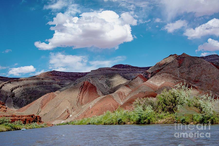 Navajo Rug Photograph by Mae Wertz