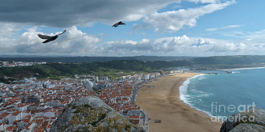 Nazare and Bird Flight by Angelo DeVal