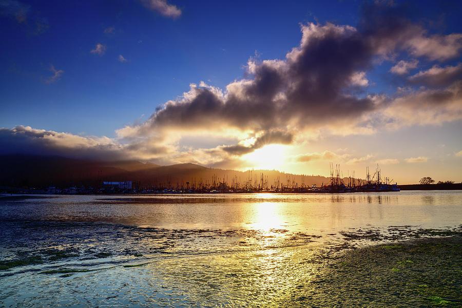 Neah Bay Marina At Sunset Photograph