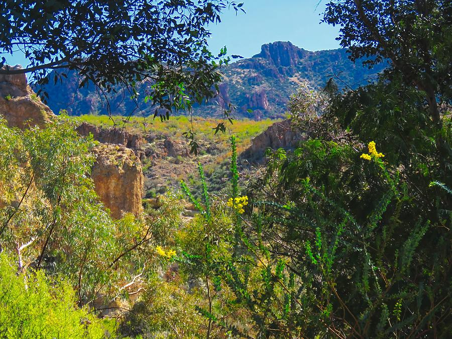 Near Picketpost Mountain in Arizona by Judy Kennedy