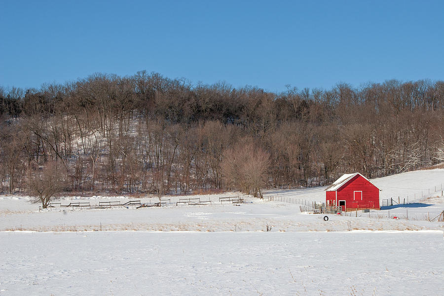 Red Photograph - Near The Woods by Todd Klassy