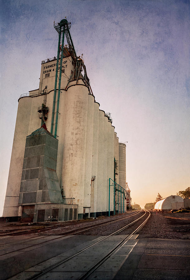 Nebraska Grain Elevator by Joan Carroll