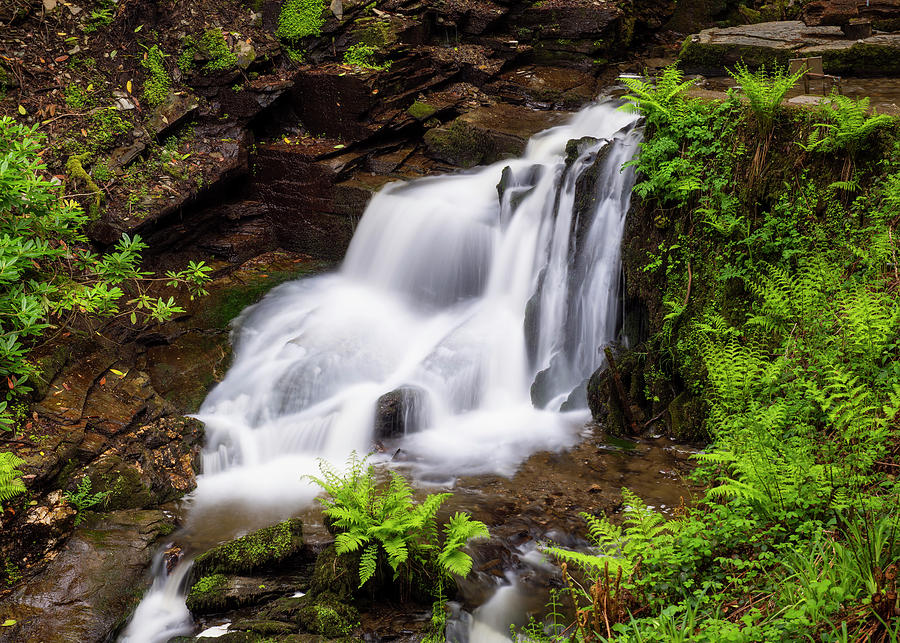 Cornwall Photograph - Nectans Waterfall by Michael Blanchette Photography