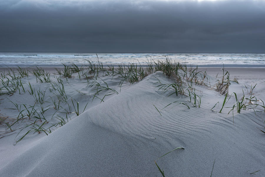 Nedonna Beach Sand Dunes by Johanna Froese