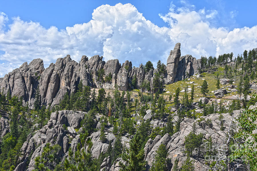Needles Highway, Black Hills by Catherine Sherman