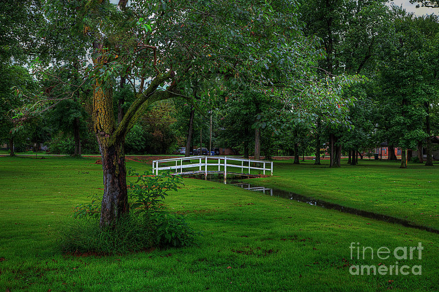 Travel Photograph - Neelville City Park by Larry Braun