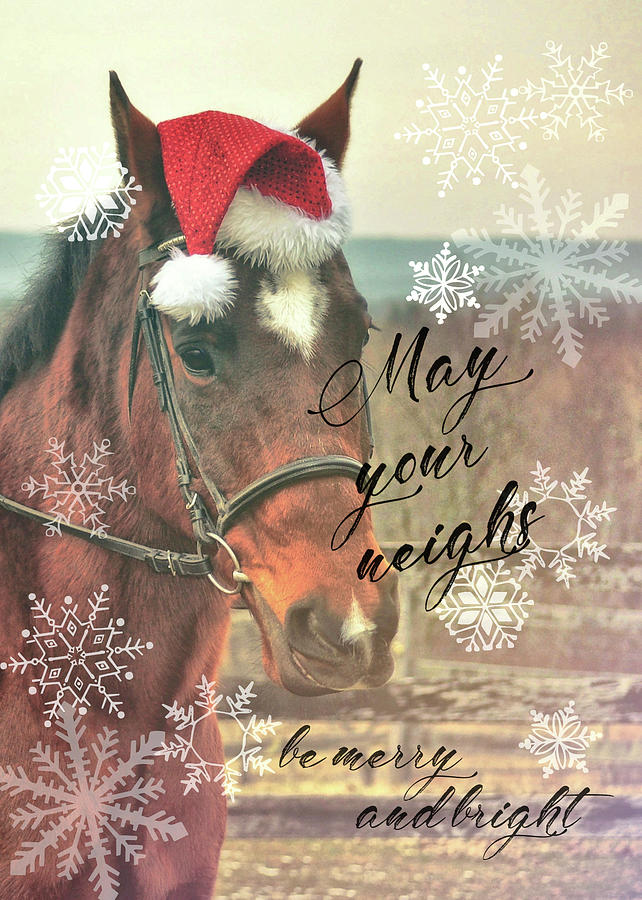 NEIGH WISHING YOU quote by Dressage Design