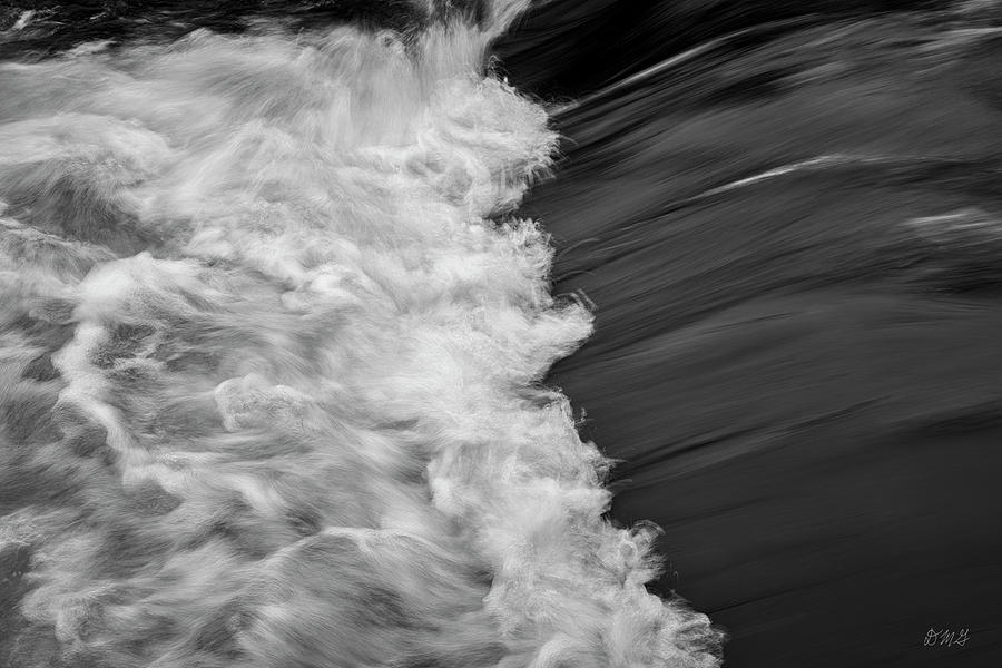 Nemasket River I BW by David Gordon